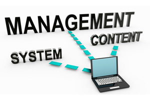 Need a New Content Management System?