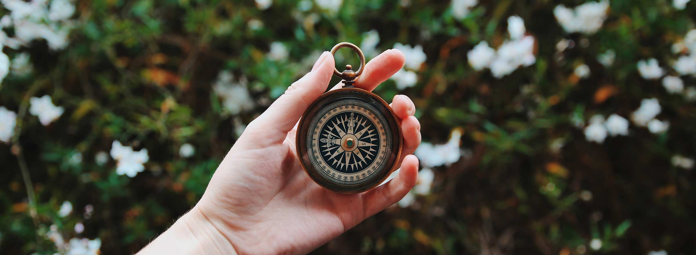 Person holding a compass in hand, representing how online surveys can help guide your nonprofit and measure its impact