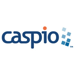 Caspio Standard Plan 1-Year Subscription – Access to Discounted Rates